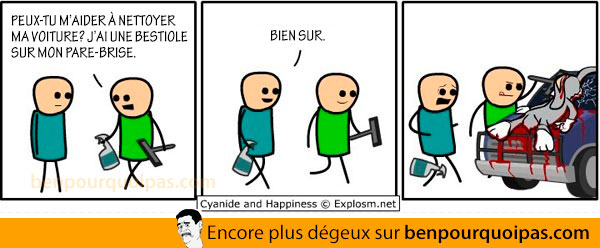cyanide-and-happinesse-en-francais-bestiole-pare-brise
