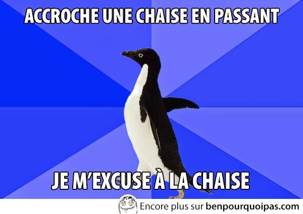 images-message-pingouin-accroche-une-chaise-en-passant