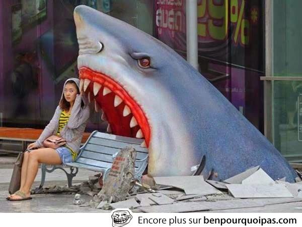 Un banc en requin probablement pour la promotion d'un film... tu veux t'asseoir?