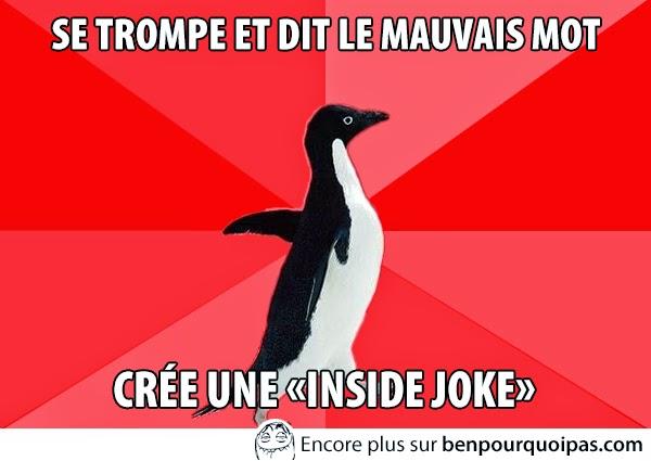 images-message-pingouin-dit-le-mauvais-mot