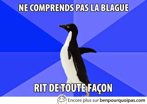 images-message-pingouin-ris-de-la-joke-tout-de-meme