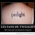 Les fans de Twilight…