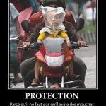 Protection, parce qu'il ne faut qu'il avale des mouches