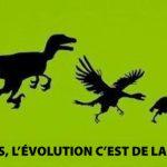 Parfois, l'évolution c'est de la merde!
