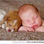 Un bébé et un chiot… 1, 2, 3 GO «Ahhhhhh»!