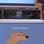 Restaurant chinois à côté d'un vétérinaire