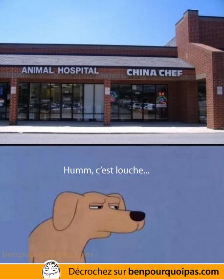 animal-hospital-china-chef