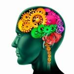 Des exercices pour le cerveau!
