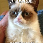 Grumpy Cat: j'aime les humains comme j'aime le café