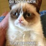 Grumpy Cat: Je deteste les personnes du matin…