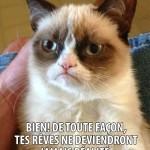 Grumpy Cat: Tu peux pas dormir? Bien!