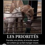 Les priorités, tu as mal choisis