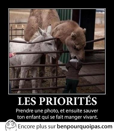 les-priorites