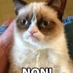 Grumpy Cat: Si tu aimes le soleil…NON!