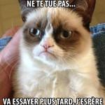 Grumpy cat: Quelque chose qui ne te tue pas