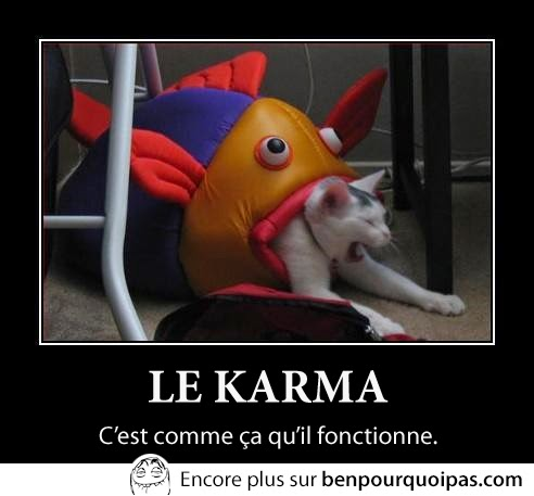 karma chat se fait manger par poisson