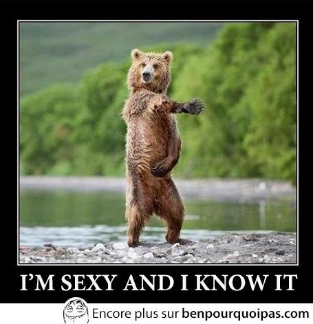 ours danse