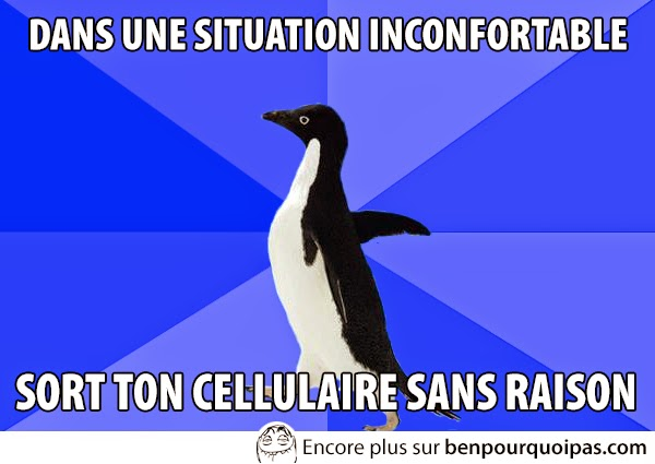 images-message-pingouin-situation-malaise