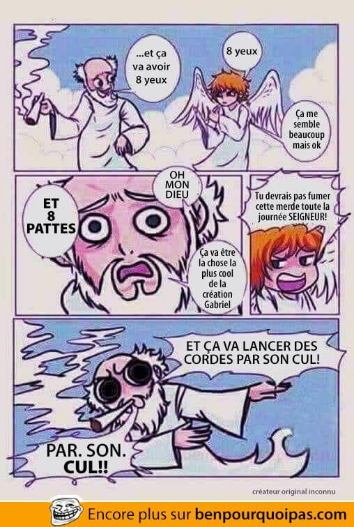 Dieu était high lorsqu'il a créé les araignées!