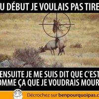 La chasse... on tire ou pas dans cette situation