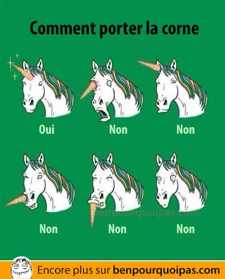 Comment une licorne doit porter la corne