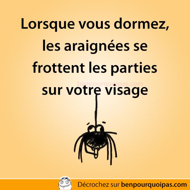 Lorsque vous dormez, les araignées se frottent les parties sur votre visage
