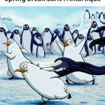 Spring Break dans l'Antartique