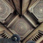 Photographe au sol, les pigeons sont inquiets…