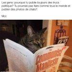 Pourquoi tu post pas des photos de chat comme tous le monde