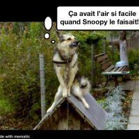 Ça avait l'air si facile quand Snoopy le faisait!