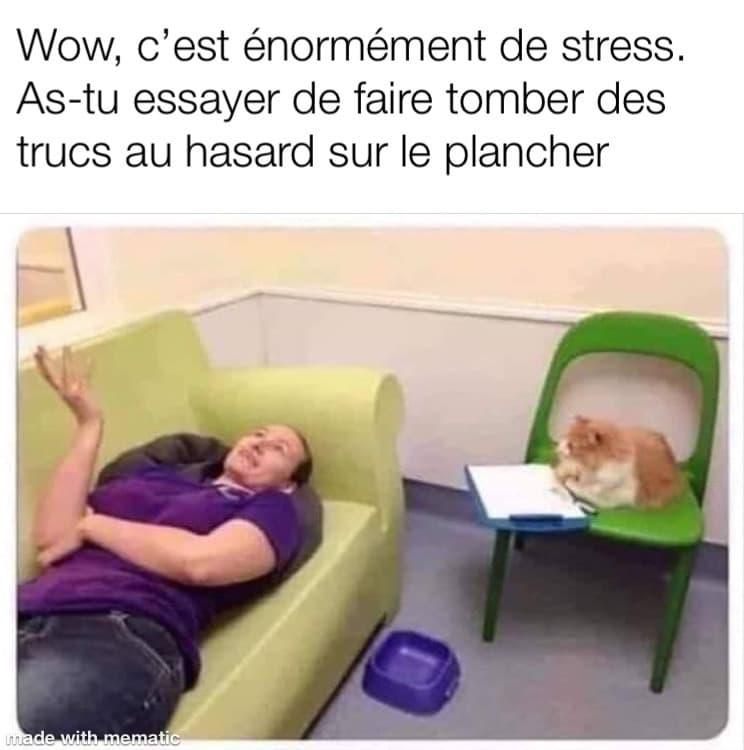 Un chat psychologue donne des conseils valables