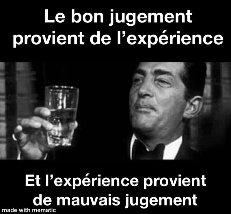 Le bon jugement provient de l'expérience...