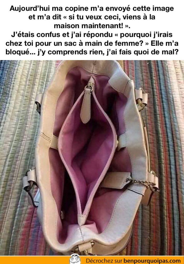 un sac à main ressemble a un vagin