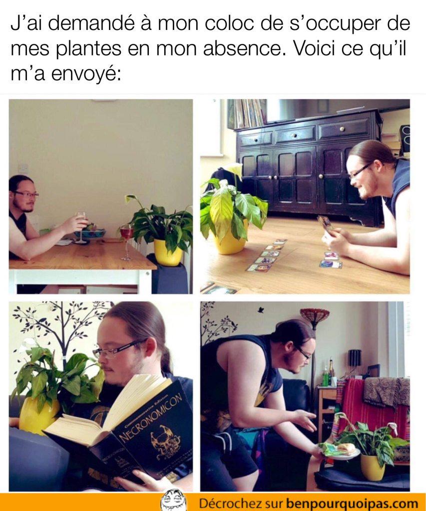 un homme lis une histoire à sa plante