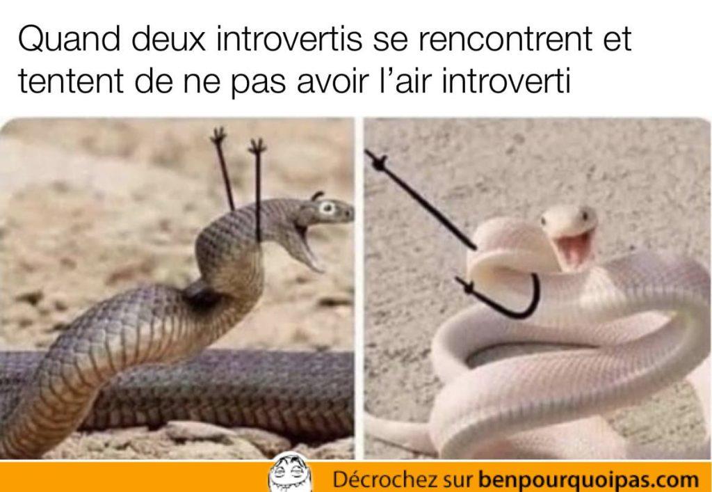 serpents avec des bras dessinés doodles