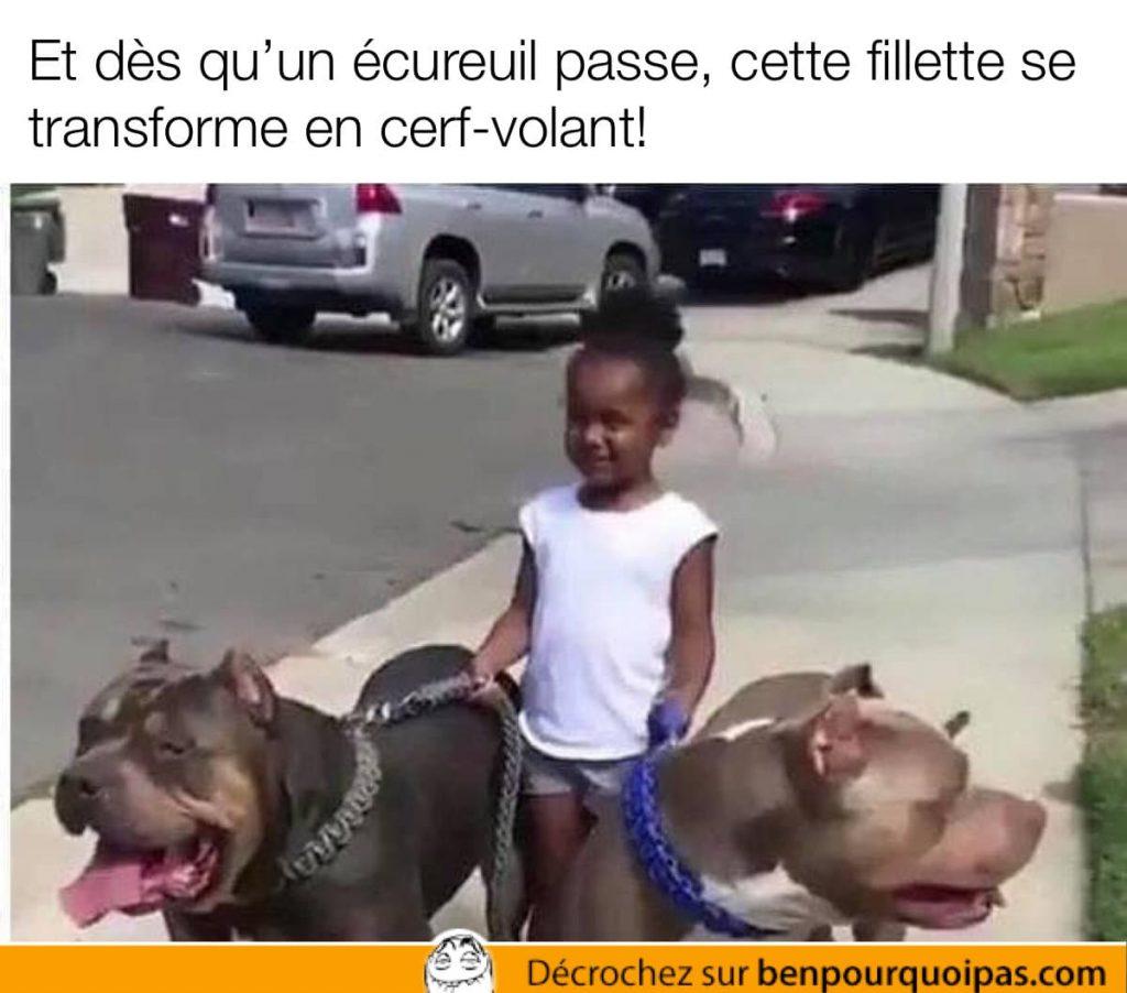 une petite fille avec deux énormes chiens