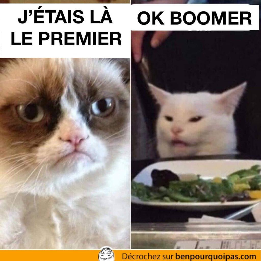 Grampy cat et screaming lady cat meme