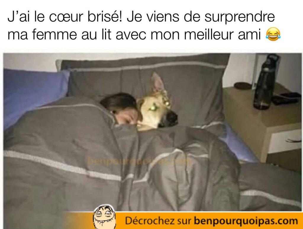 une femme est couché dans son lit avec son chien