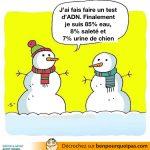 Test ADN pour un bonhomme de neige