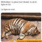 Tu peux tout réussis dans la vie car le tigre est en toi…