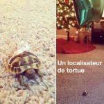 Un localisateur de tortues… on arrête pas le progrès!!