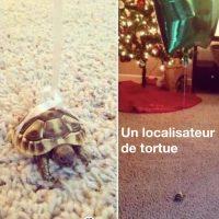 Un localisateur de tortues... on arrête pas le progrès!!