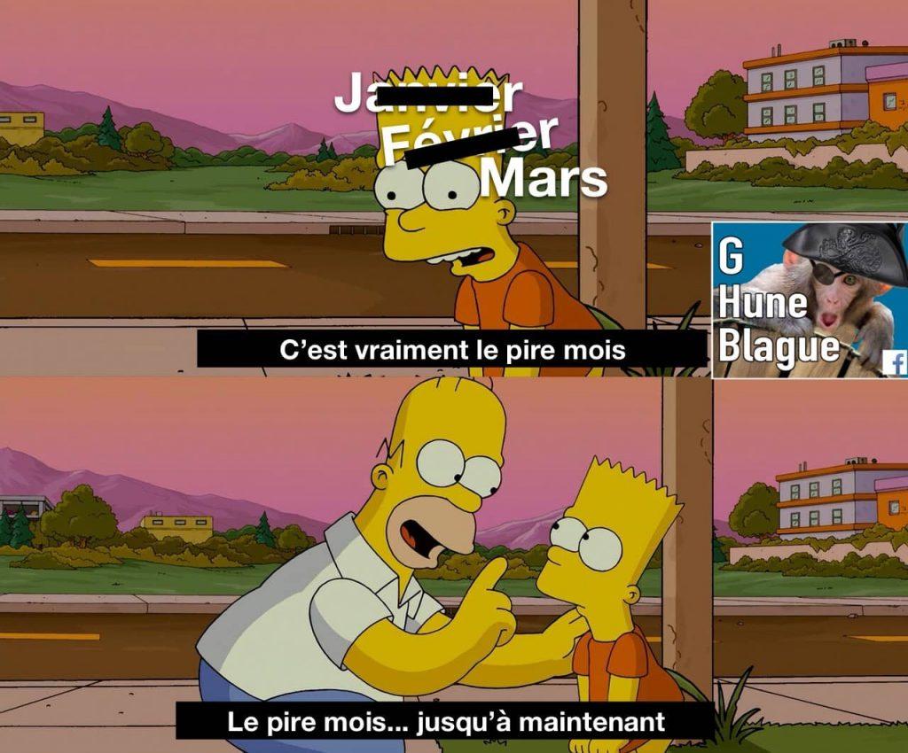 C'est vraiment le pire mois de 2020... jusqu'à maintenant! Homer et Bart Simpson Memes