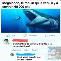 Comment un requin peut avoir vécu il y a 60 000 ans quand la terre a 2020 ans?