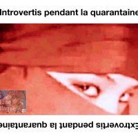 Les introvertis versus les extrovertis