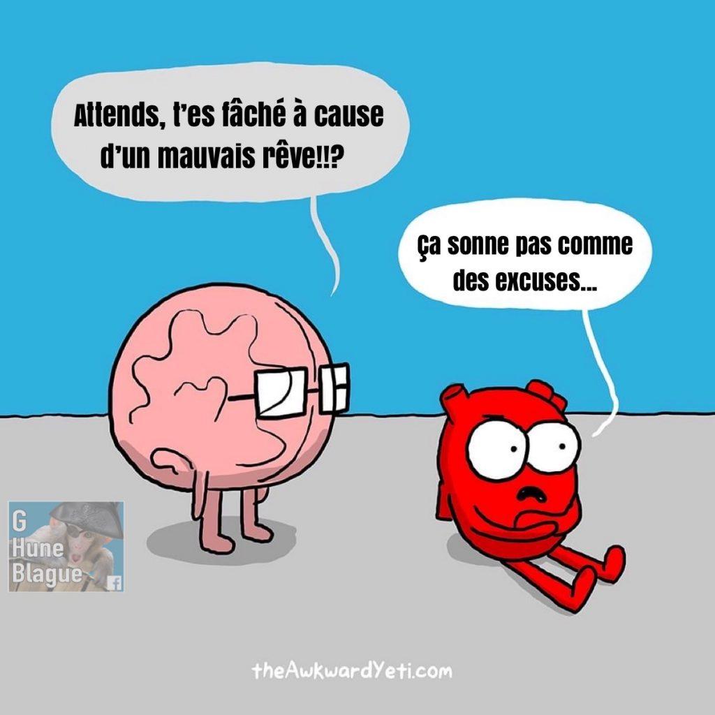 Quand le cerveau fait du mal au coeur avec un mauvais rêve et que le coeur demande des excuses