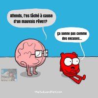 Quand le cerveau fait du mal au coeur