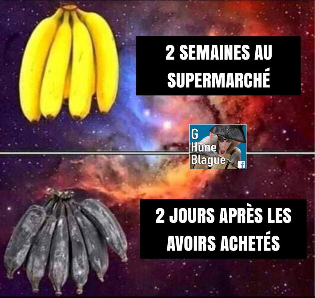 Le grand mystère des bananes | humour et blagues en français